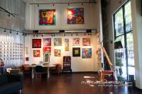 Sonya Paz Gallery on Froomz