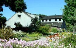 Venues-for-rent-Los-Altos-History-Museum