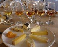 cheese-school-wine-cheese-pairing