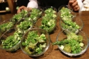 Green salad 130410_PBX-Exploratorium (37)